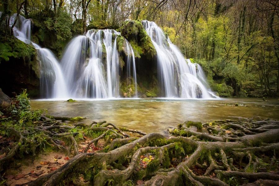 Wasserfall Fantasie Wurzeln
