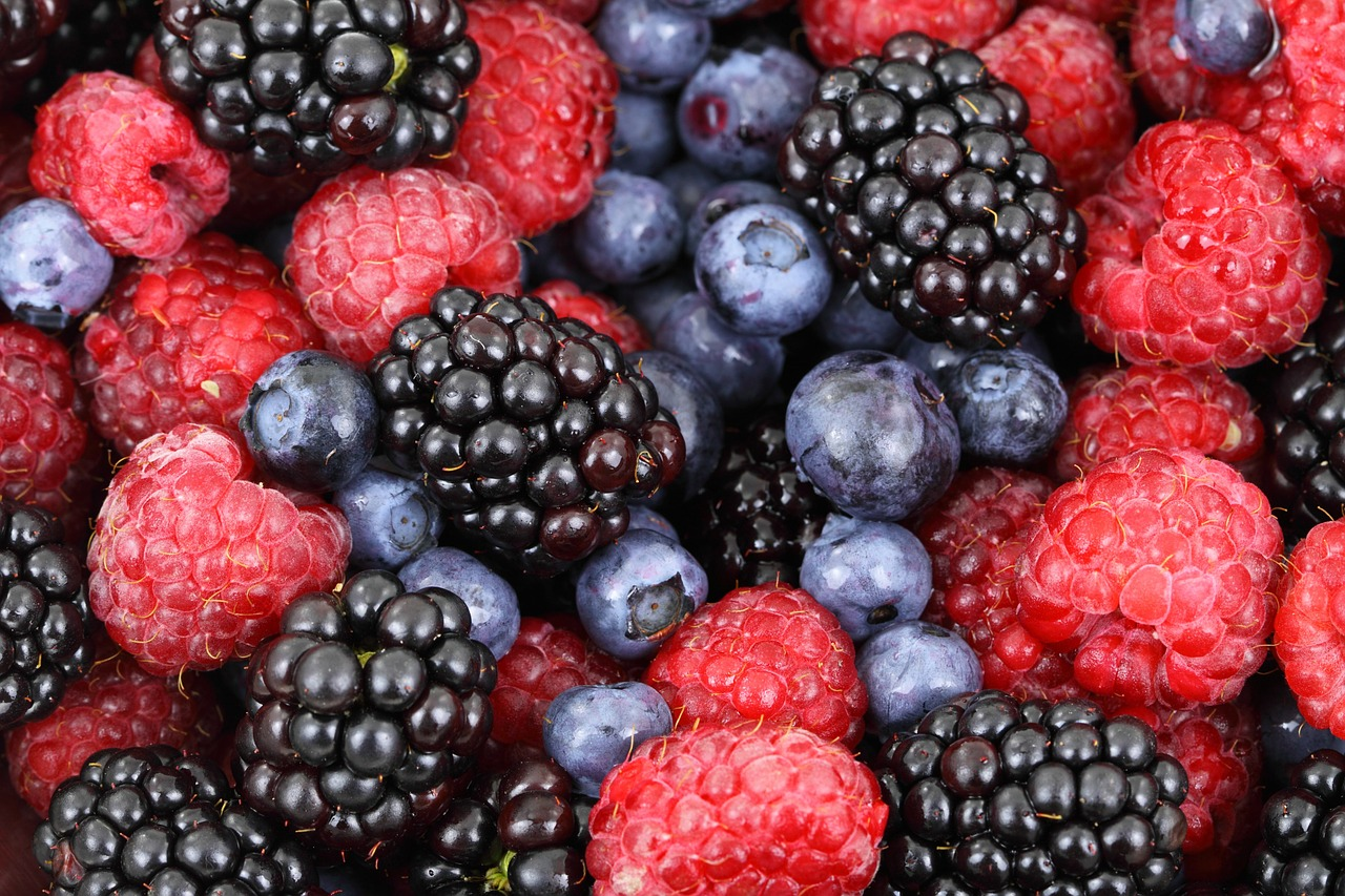 berries beeren food