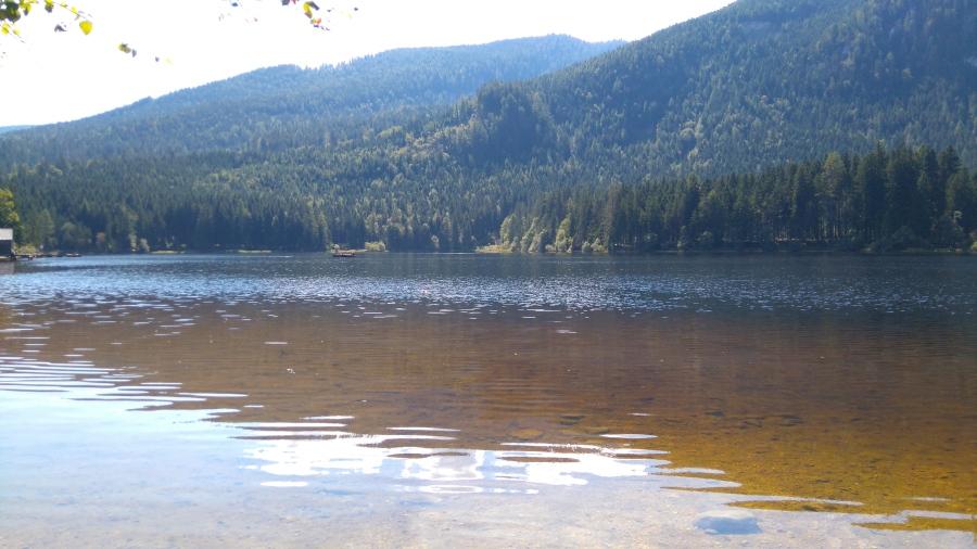 Ödensee See Ausflug Schwimmen